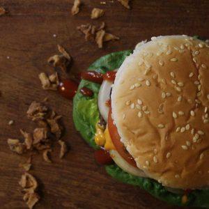 Burgerpatties-Rind---Highland-Cattle-Dittmer-oben